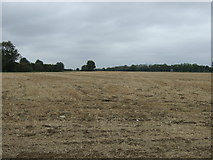 TF2002 : Farmland off Newborough Road by JThomas