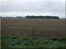 TF3107 : Farmland of Archers Drove by JThomas