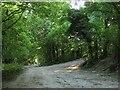 TQ3907 : Track Junction, Swanborough Hill by Simon Carey