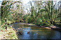 SX1164 : Looking East up the River Fowey in Dreasonmoor Woods by Mike May