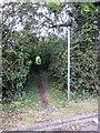 SP7734 : Path to Thornborough by Philip Jeffrey