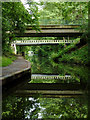 SP1680 : Elmdon Heath Bridge near Solihull by Roger  Kidd