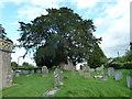 ST5258 : St. Bartholomew, Ubley: churchyard (c) by Basher Eyre