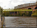 SJ8297 : River Irwell, Woden Street Bridge by David Dixon