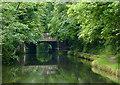 SP1284 : Approaching Yardley Road Bridge east of Tyseley, Birmingham by Roger  Kidd