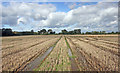 SJ7878 : Stubble and tracks by Peter Turner