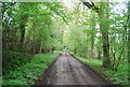 TQ0221 : Wey South Path by N Chadwick