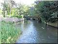 SP1007 : River Coln southwest of Ablington Manor by Stuart Logan