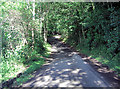 SP1311 : Unnamed lane within Larkethill Wood by Stuart Logan