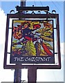 SO8455 : The Chestnut (formerly The Chestnut Tree) (2) - sign, 17 Lansdowne Road, Worcester by P L Chadwick
