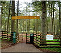 SO0013 : Forest Frenzy, Garwnant Forest Centre by John Grayson