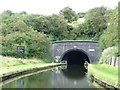 SO9588 : Southern portal, Netherton Tunnel by Christine Johnstone