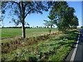 TL2678 : Countryside near Broughton by Marathon