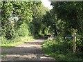TL5162 : Paths meet by John Sutton