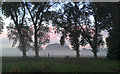 SK4833 : Mist in West Park by David Lally