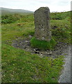 SX5663 : Boundary stone by the roadside by Graham Horn