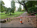 SZ0891 : Bournemouth: on Monday this was a tree! by Chris Downer