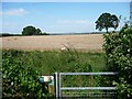 SO9768 : Public footpath at the edge of a wheatfield by Christine Johnstone