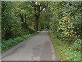 TQ0281 : Bellswood Lane, Iver  by Alan Hunt