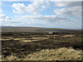 NY9006 : Route of bridleway over moorland by Trevor Littlewood