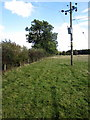 SP9728 : Electricity Pole by the bridleway by Philip Jeffrey