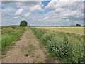 TL4981 : Sedge Fen Drove by Hugh Venables