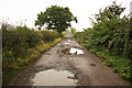SK7281 : Potholes &amp; puddles by Richard Croft
