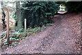 SP9128 : Greensand Ridge Walk through Rushmere Park by Philip Jeffrey