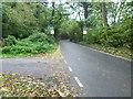 TQ3964 : Layhams Road passing Well Wood by Marathon