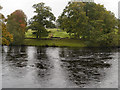NY9170 : River North Tyne at Chesters Bridge by David Dixon