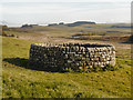 NY7868 : Well at Housesteads by David Dixon