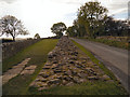 NY5764 : Hadrian's Wall, Banks East Turret 52A by David Dixon