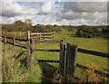 SX5165 : Gate onto Roborough Down by Derek Harper