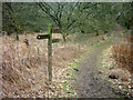 SE7368 : Fingerpost near Welburn by John Sparshatt