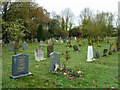 TQ6786 : Graveyard, Langdon Hills by Robin Webster