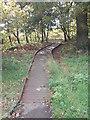 SE1133 : Boarded Footpath - Ayresome Oval by Betty Longbottom