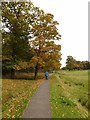 NY4057 : Path into Rickerby Park by Oliver Dixon