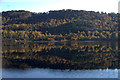 NH2425 : Reflections on Loch Beinn a' Mheadhoin, Glen Affric by Mike Pennington