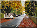 SJ8691 : Heaton Mersey, Mersey Road by David Dixon