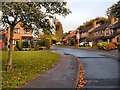 SJ8691 : Bluestone Drive, Heaton Mersey by David Dixon