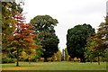 TQ1876 : Avenue of Trees, Kew Gardens, London by Christine Matthews