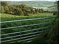 SO4069 : The fields above Wigmore Castle by Peter Evans