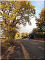 SJ8487 : Gatley, Firs Road by David Dixon