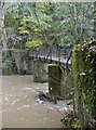 ST6276 : Bridge over the River Frome by Neil Owen