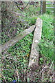 SP4716 : Benchmark on abandoned fence post beside A4260 by Roger Templeman