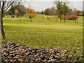SJ8893 : Houldsworth Golf Course, Reddish by David Dixon