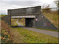 SJ8894 : Fallowfield Loop Line, Bridge#14 (Nelstrop Road) by David Dixon