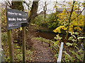 SK0095 : Steps to Woolley Bridge Copse by David Dixon