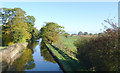 SJ6150 : Canal and pasture near Ravensmoor, Cheshire by Roger  Kidd