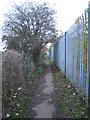 SE5605 : Path to Millfield Road by Jonathan Thacker